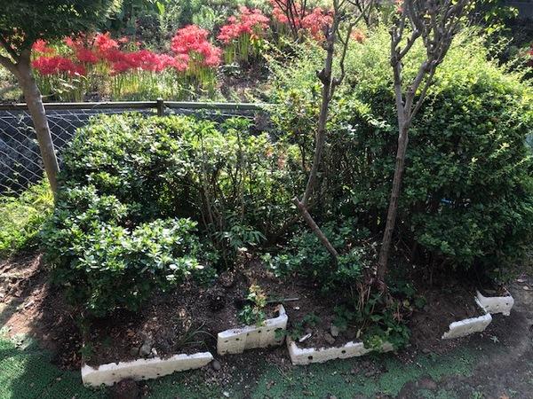 静岡県三島市で遺品整理後の伐採作業